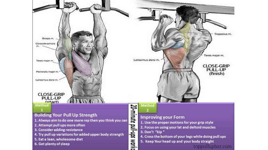 Which Muscles Do Pull Ups Build