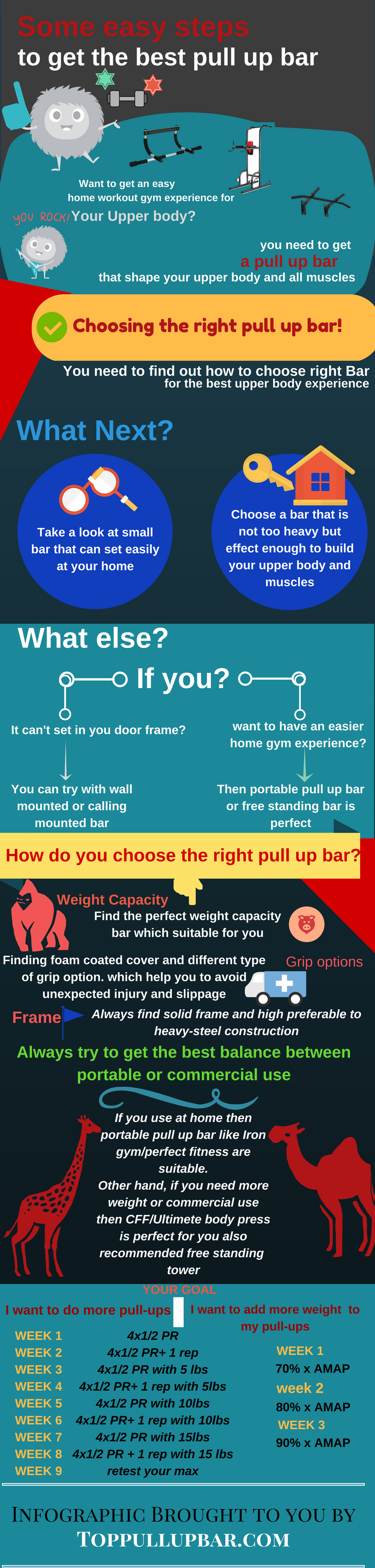 pull up bar info graphic